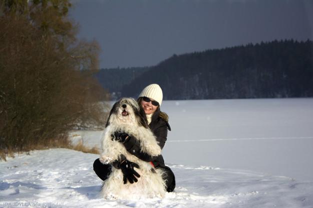 Ida / PON zimą - Szczenięta Yvette Dobroczek