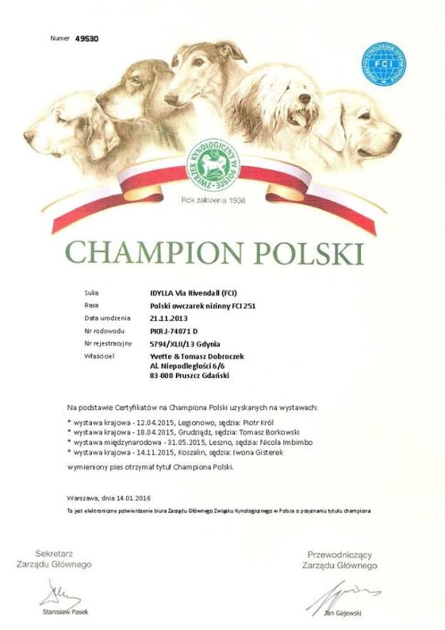 Idylla Via Rivendall - PON - Nowy Champion Polski - Szczenięta Yvette Dobroczek