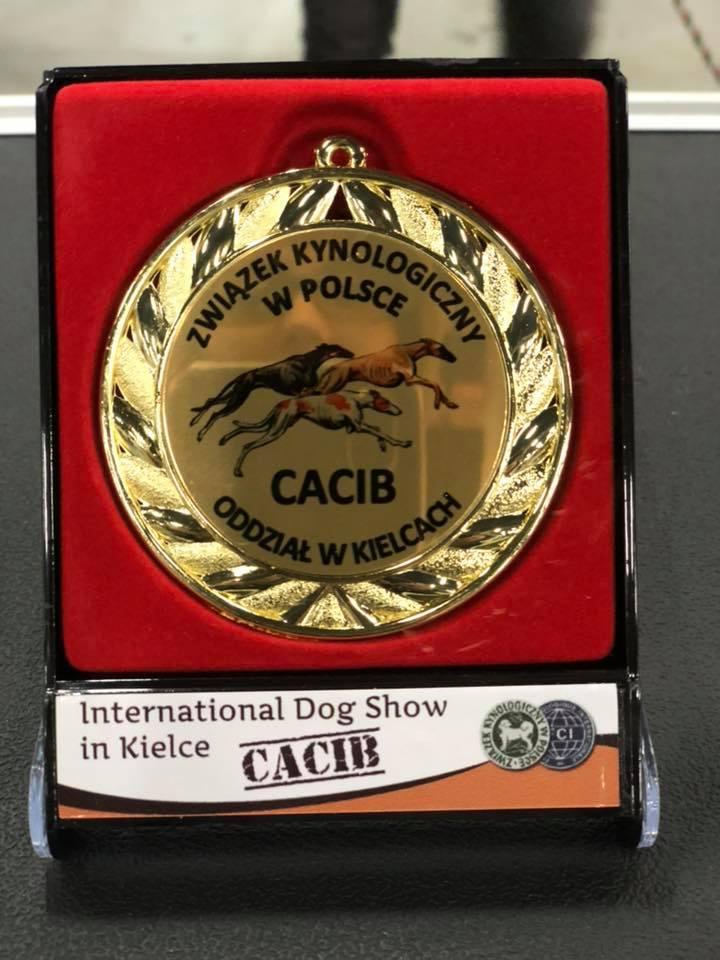 medal CACiB dla Magi